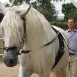 außergewöhnliche Seminare für Führungskräfte mit Pferden