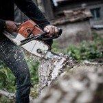 Meisterschaften der Waldarbeit in Frammersbach