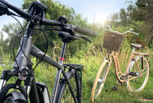 Herrenrad in Schwarz vor einem Damenrad in beige