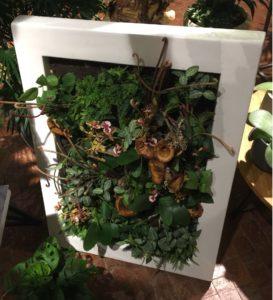 Grünes in einem weißen, dicken Rahmen