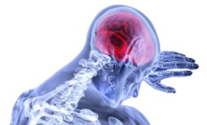 Darstellung des Hirns im Kopf