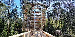 eine Brücke führt wendeltreppenartig nach oben