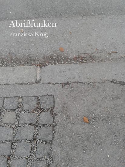 Abrißfunken - Blick ins Buch