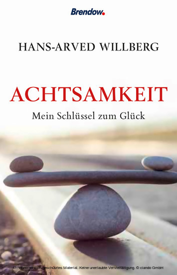 Achtsamkeit - Blick ins Buch