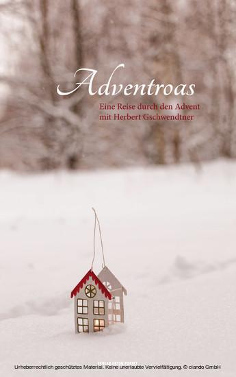 Adventroas - Blick ins Buch