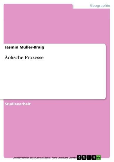 Äolische Prozesse - Blick ins Buch