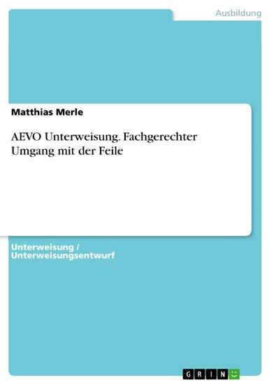 AEVO Unterweisung. Fachgerechter Umgang mit der Feile - Blick ins Buch