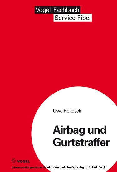 Airbag und Gurtstraffer - Blick ins Buch