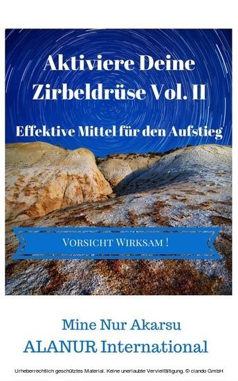 Aktiviere Deine Zirbeldrüse Vol. II - Blick ins Buch