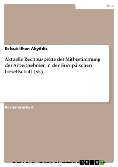 Aktuelle Rechtsaspekte der Mitbestimmung der Arbeitnehmer in der Europäischen Gesellschaft (SE) - Blick ins Buch