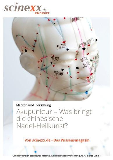 Akupunktur - Blick ins Buch