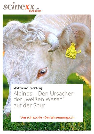 Albinos - Blick ins Buch
