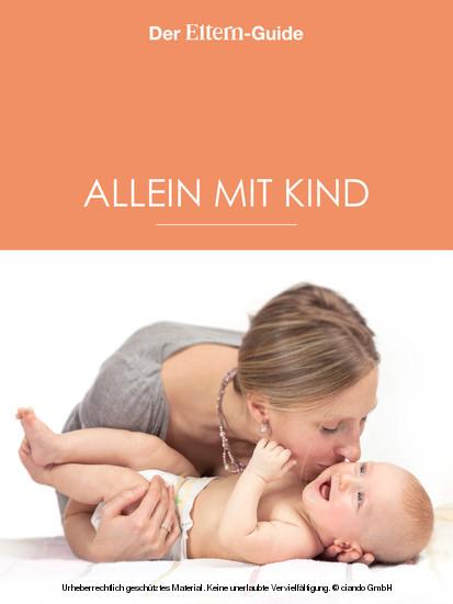 Alleinerziehend - aber nicht allein! (ELTERN Guide) - Blick ins Buch