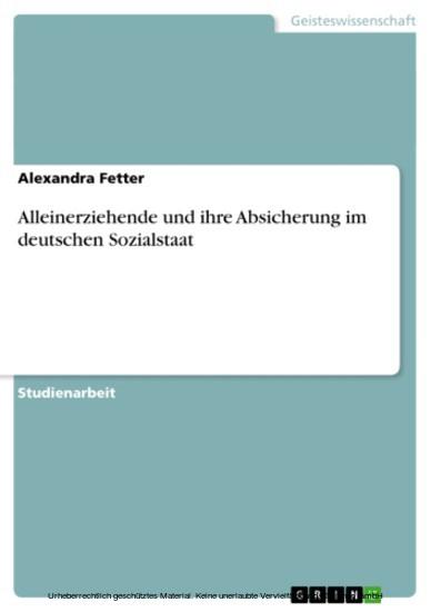Alleinerziehende und ihre Absicherung im deutschen Sozialstaat - Blick ins Buch