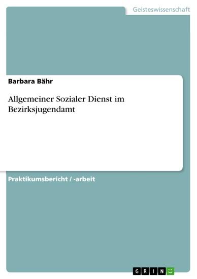 Allgemeiner Sozialer Dienst im Bezirksjugendamt - Blick ins Buch
