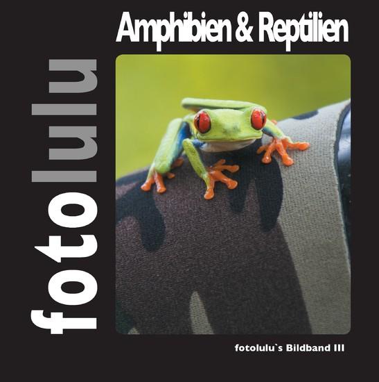 Amphibien & Reptilien - Blick ins Buch