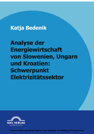 Analyse der Energiewirtschaft von Slowenien, Ungarn und Kroatien: Schwerpunkt Elektrizitätssektor - Blick ins Buch