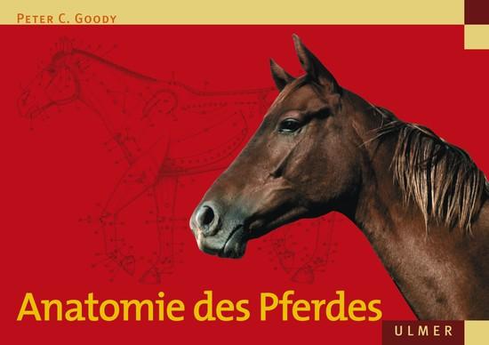 Anatomie des Pferdes - Blick ins Buch