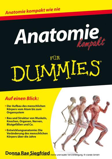 Anatomie kompakt für Dummies - Blick ins Buch