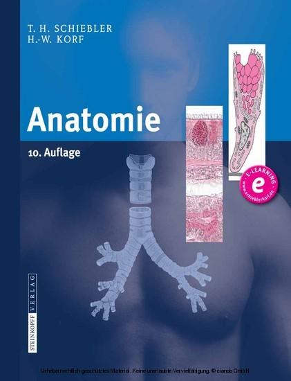 Anatomie - Blick ins Buch