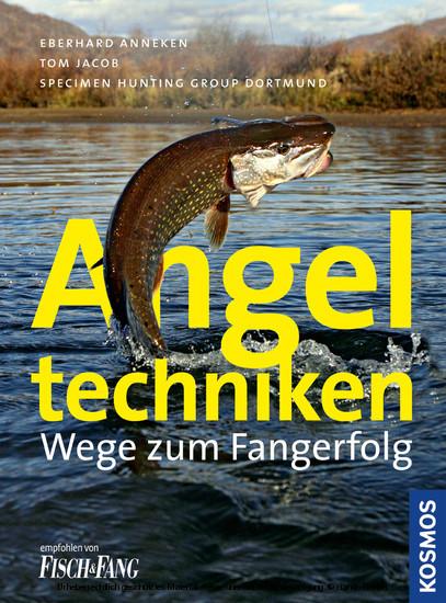 Angeltechniken - Blick ins Buch