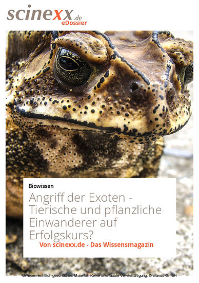 Angriff der Exoten - Blick ins Buch