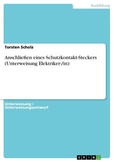 Anschließen eines Schutzkontakt-Steckers (Unterweisung Elektriker-/in) - Blick ins Buch
