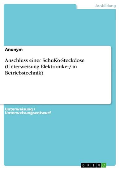 Anschluss einer SchuKo-Steckdose (Unterweisung Elektroniker/-in Betriebstechnik) - Blick ins Buch