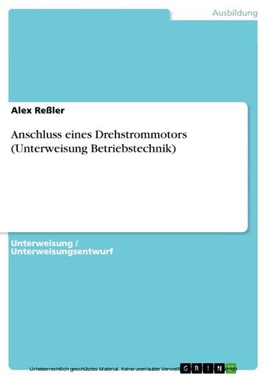 Anschluss eines Drehstrommotors (Unterweisung Betriebstechnik) - Blick ins Buch
