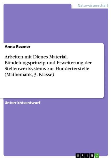 Arbeiten mit Dienes Material. Bündelungsprinzip und Erweiterung der Stellenwertsystems zur Hunderterstelle (Mathematik, 3. Klasse) - Blick ins Buch