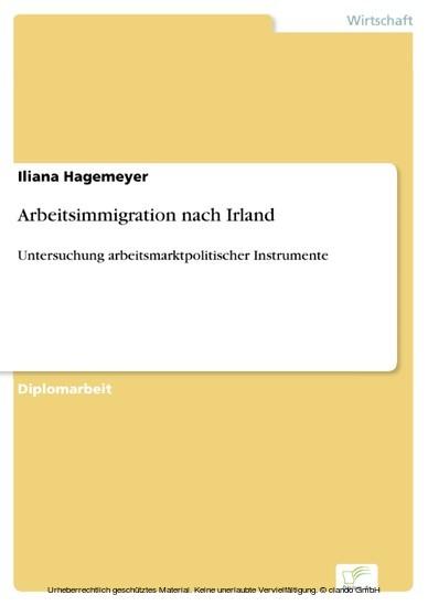 Arbeitsimmigration nach Irland - Blick ins Buch