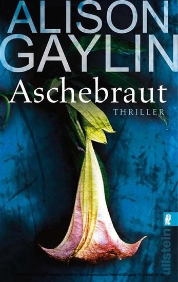 Aschebraut - Blick ins Buch