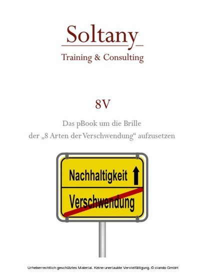 A.Soltany Noory - Blick ins Buch