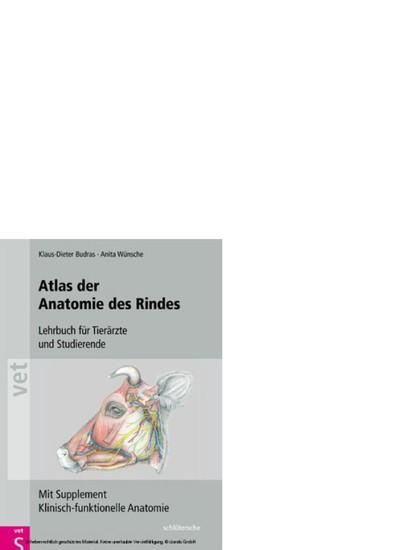 Atlas der Anatomie des Rindes - Blick ins Buch