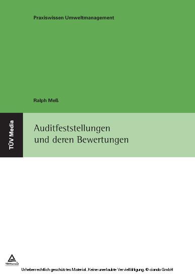 Auditfeststellungen und deren Bewertungen - Blick ins Buch