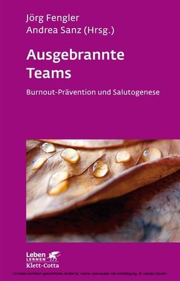 Ausgebrannte Teams - Blick ins Buch