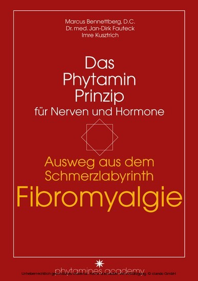 Ausweg aus dem Schmerzlabyrinth Fibromyalgie - Blick ins Buch