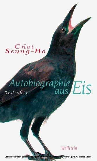 Autobiographie aus Eis - Blick ins Buch