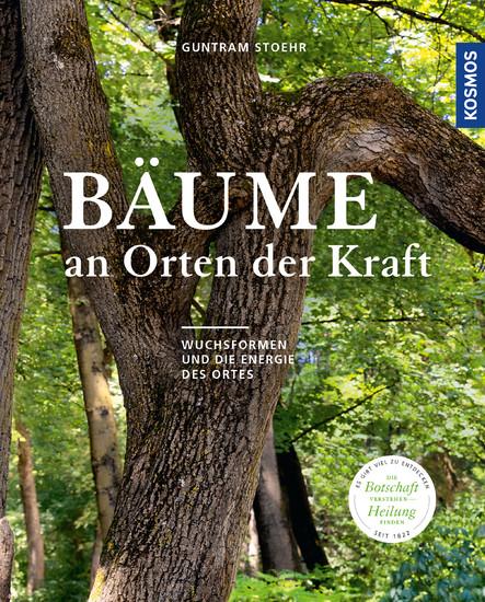 Bäume an Orten der Kraft - Blick ins Buch
