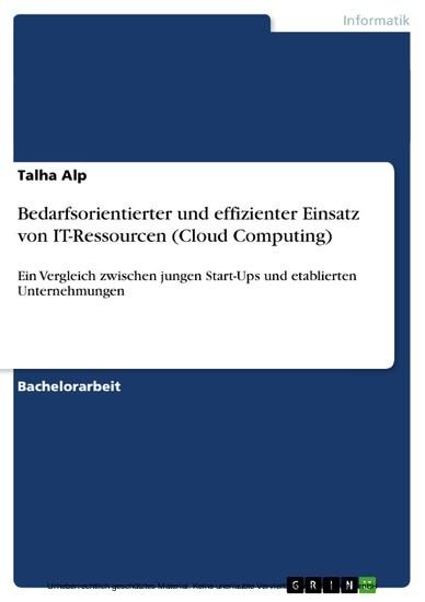 Bedarfsorientierter und effizienter Einsatz von IT-Ressourcen (Cloud Computing) - Blick ins Buch