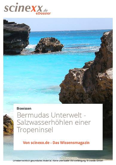 Bermudas Unterwelt - Blick ins Buch