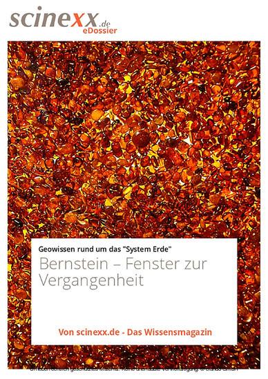 Bernstein - Blick ins Buch