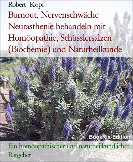 Burnout, Nervenschwäche Neurasthenie behandeln mit Homöopathie, Schüsslersalzen (Biochemie) und Naturheilkunde - Blick ins Buch