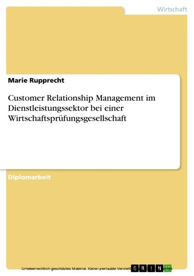 Customer Relationship Management im Dienstleistungssektor bei einer Wirtschaftsprüfungsgesellschaft - Blick ins Buch