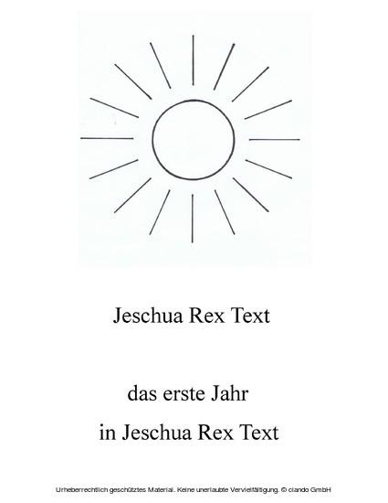 Das erste Jahr in Jeschua Rex Text - Blick ins Buch