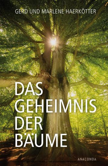 Das Geheimnis der Bäume - Blick ins Buch