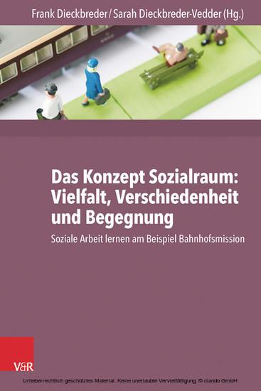 Das Konzept Sozialraum: Vielfalt, Verschiedenheit und Begegnung - Blick ins Buch