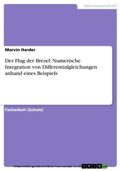 Der Flug der Brezel: Numerische Integration von Differentialgleichungen anhand eines Beispiels - Blick ins Buch