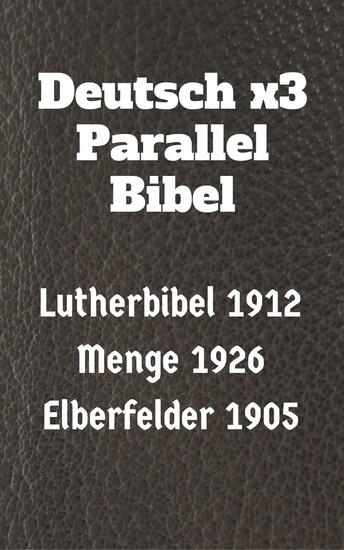 Deutsch x3 Parallel Bibel - Blick ins Buch