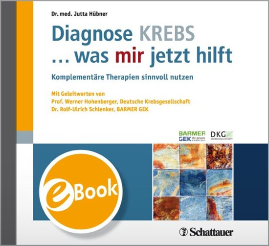 Diagnose KREBS ... was mir jetzt hilft - Blick ins Buch